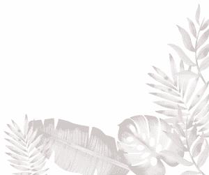 palm-tree-bottom