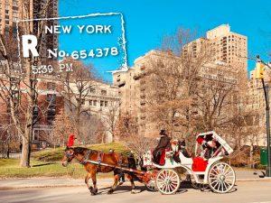 New York Spoon